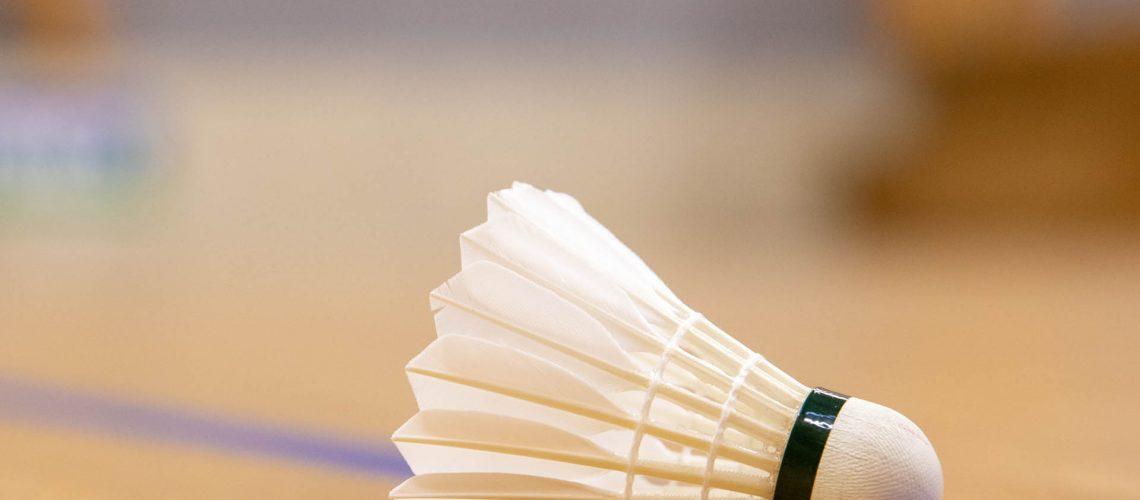 Volant de Badminton à Yverdon